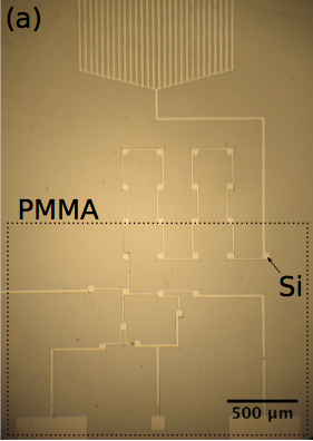 microfluidic chip for performing multi-step chemical analysis